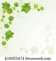 Grapes vine background