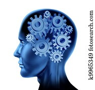 Intelligence and brain function