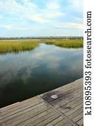 Marsh landscape 2