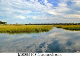 Marsh landscape 4