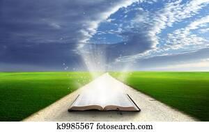 Open bible in field.