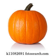 Pumpkin on white