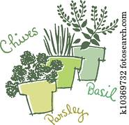 Three pots of herbs with their names