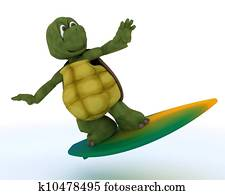 tortoise with surf board