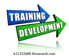 training development in arrows