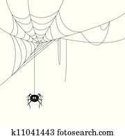 Vector Spider and a Web