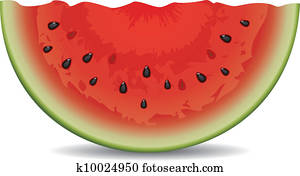 vector watermelon slice