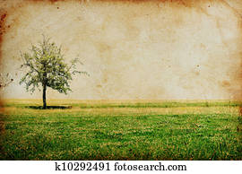 vintage background with tree