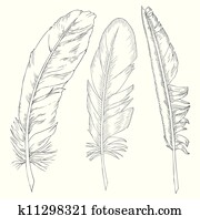 writing feathers