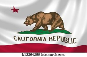 Flag of California American state