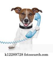 hund, telefon, sprechen