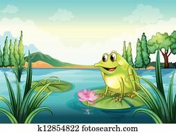 a, frosch, an, dass, fluss