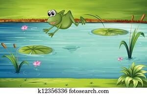 a, frosch, springende