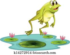 a, springende, frosch, an, dass, teich