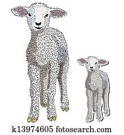 Baby lamb vector