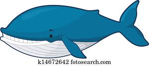 blauwale