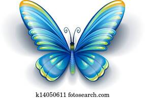 blue butterfly with color wings