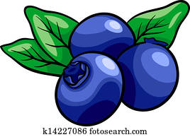 blueberry fruits cartoon illustration