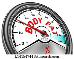 body fat conceptual meter