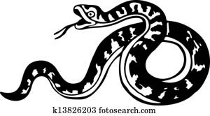 Curly Snake Illustration