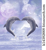Dolphins Kisses