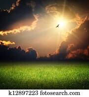 Fantasy landscape. Magic sunset and bird on sky
