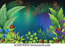 Five bugs in a rain forest