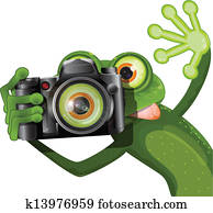 frog with a camera