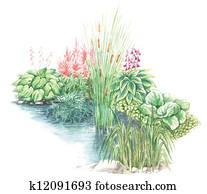 garden design nearly a water body