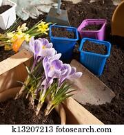 gardening,