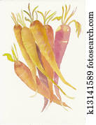 hand painted watercolor of a bunch of carrots