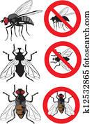housefly - warning signs