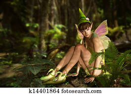 In the Fairy Forest