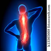 Male Hurt Backbone - Pain