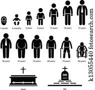 mann, menschlich, altern, wachsen, prozess