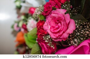 Pink rose bouquet close up background