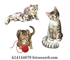 Playing cats. Kitten with ball. Two cute Small gray tabby Kittens, Isolated Illustration on white background.