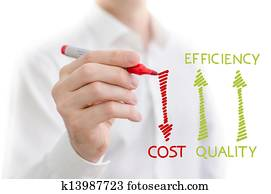 Quality, efficiency and cost