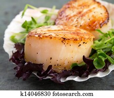 Seared scallops on lettuce