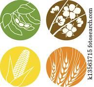 soybeans,, cotton,, getreide, und, weizen