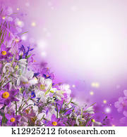 Spring bouquet from white and purple flowers