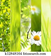 Spring seasonal collage