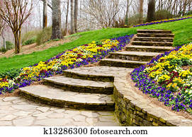 Steps leading to garden