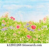 Summer Flowers on Daylight Meadow