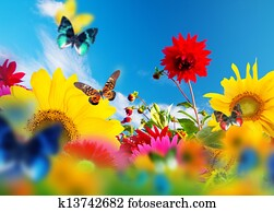 Sunny garden of flowers and butterflies