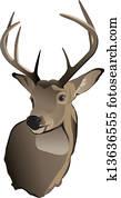 Trophy Whitetail Deer Buck