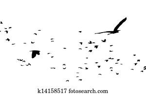 Zugvögel Clipart Lizenzfrei 760 Zugvögel Clip Art Vektor Eps