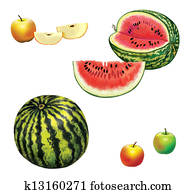Watermelon. slice of watermelon. Half of a Watermelon. Apple green and red. Apple slices.