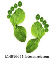 art abstract spring ecology symbol green foot print