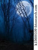 dark night forest agaist full moon